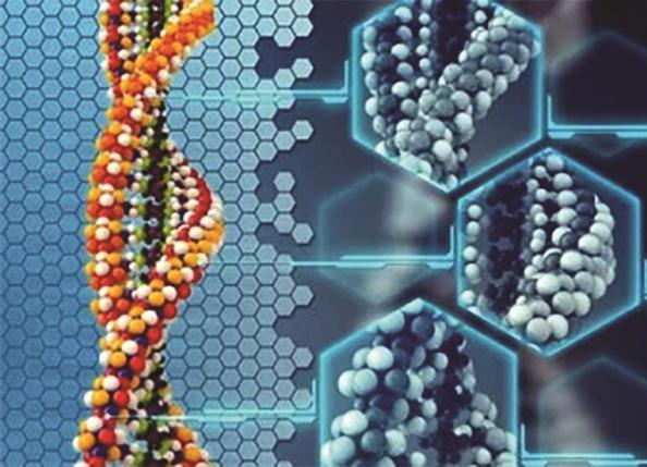 SCHOPNOST REGENERACE- klíč krozluštění záhady původu lidského těla